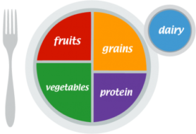 MyPlate Education